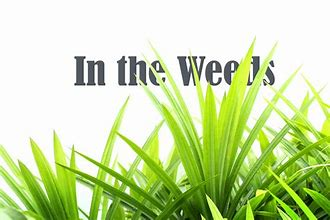 In the weeds 1